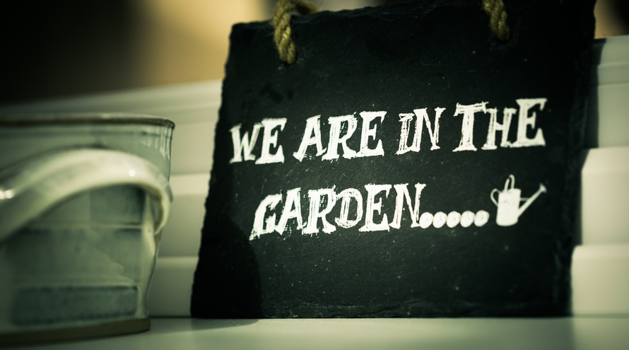 Home Gardening Tips for the Win